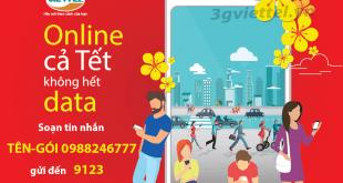 Nên chọn đăng ký gói cước 4G Viettel nào dịp tết Canh Tý 2020?