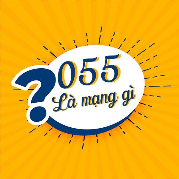 Đầu số 055 là mạng gì?